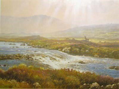 Misty glen ~ James Preston