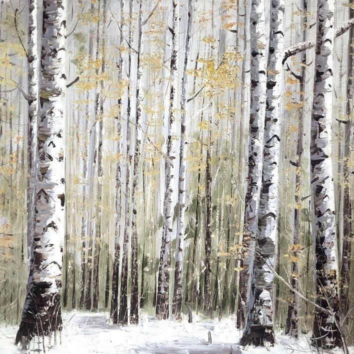 Winter dreams ~ Inam