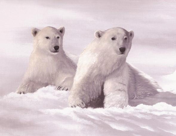 Arctic Kings ~ Jonathan Truss