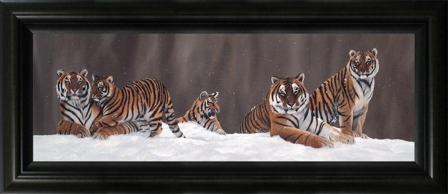 Snow patrol ~ Jonathan Truss