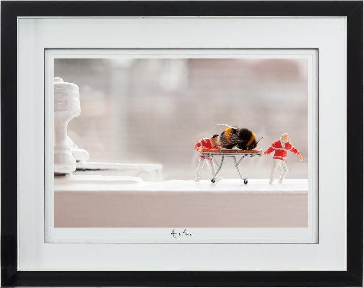 A and Bee ~ Mr Kuu