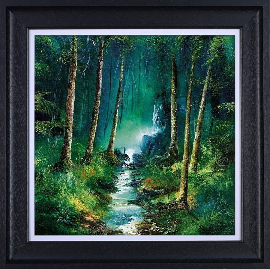 Forest of Light ~ Philip Gray