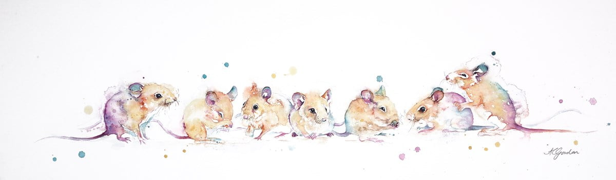 A Medley of Mice ~ Amanda Gordon