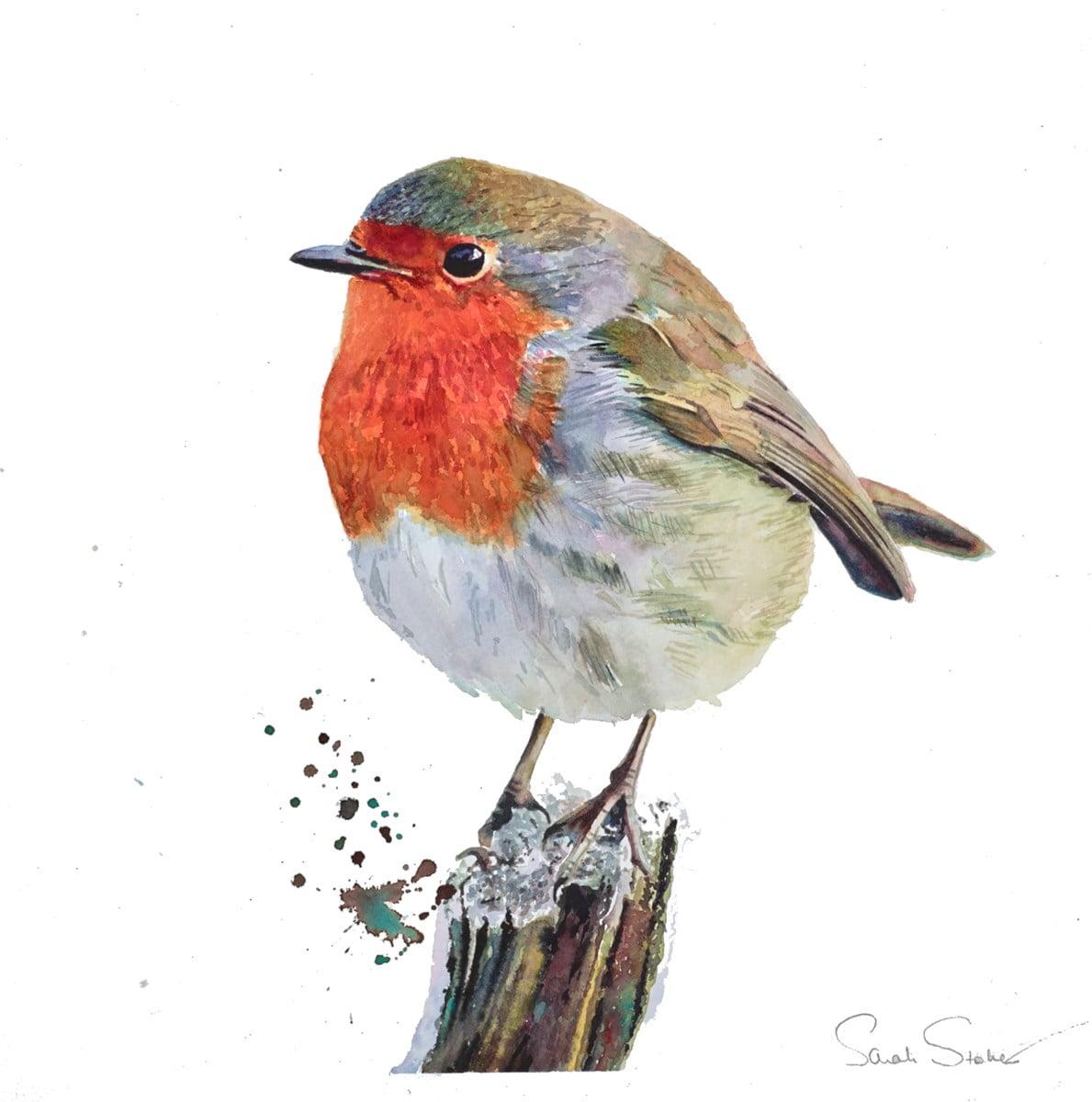 Little Robin Redbreast ~ Sarah Stokes