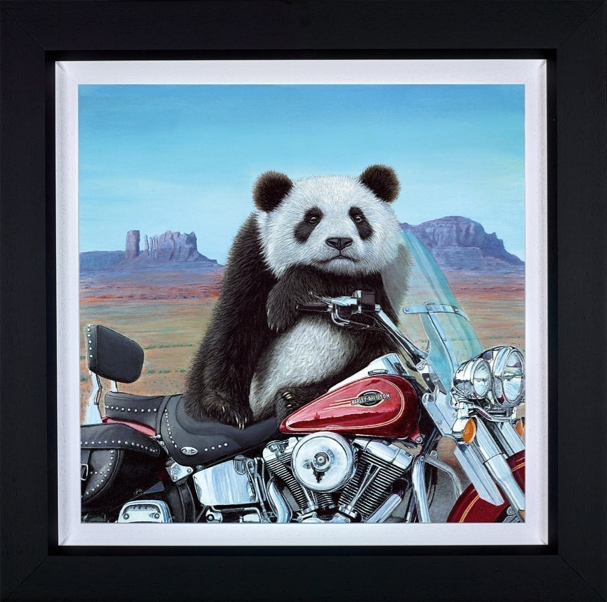 Born to be Wild ~ Steve Tandy