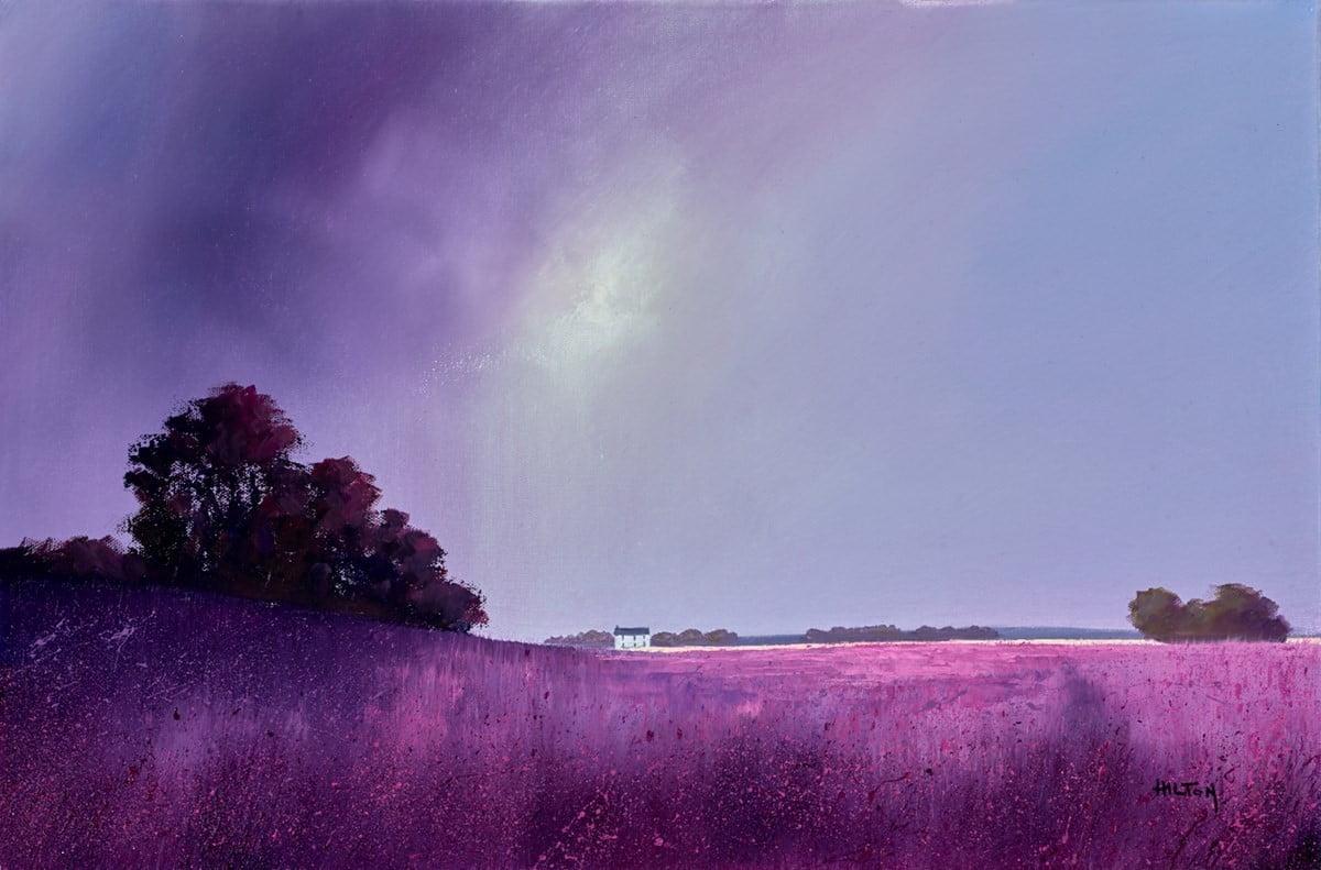 Magenta Evening ~ Barry Hilton