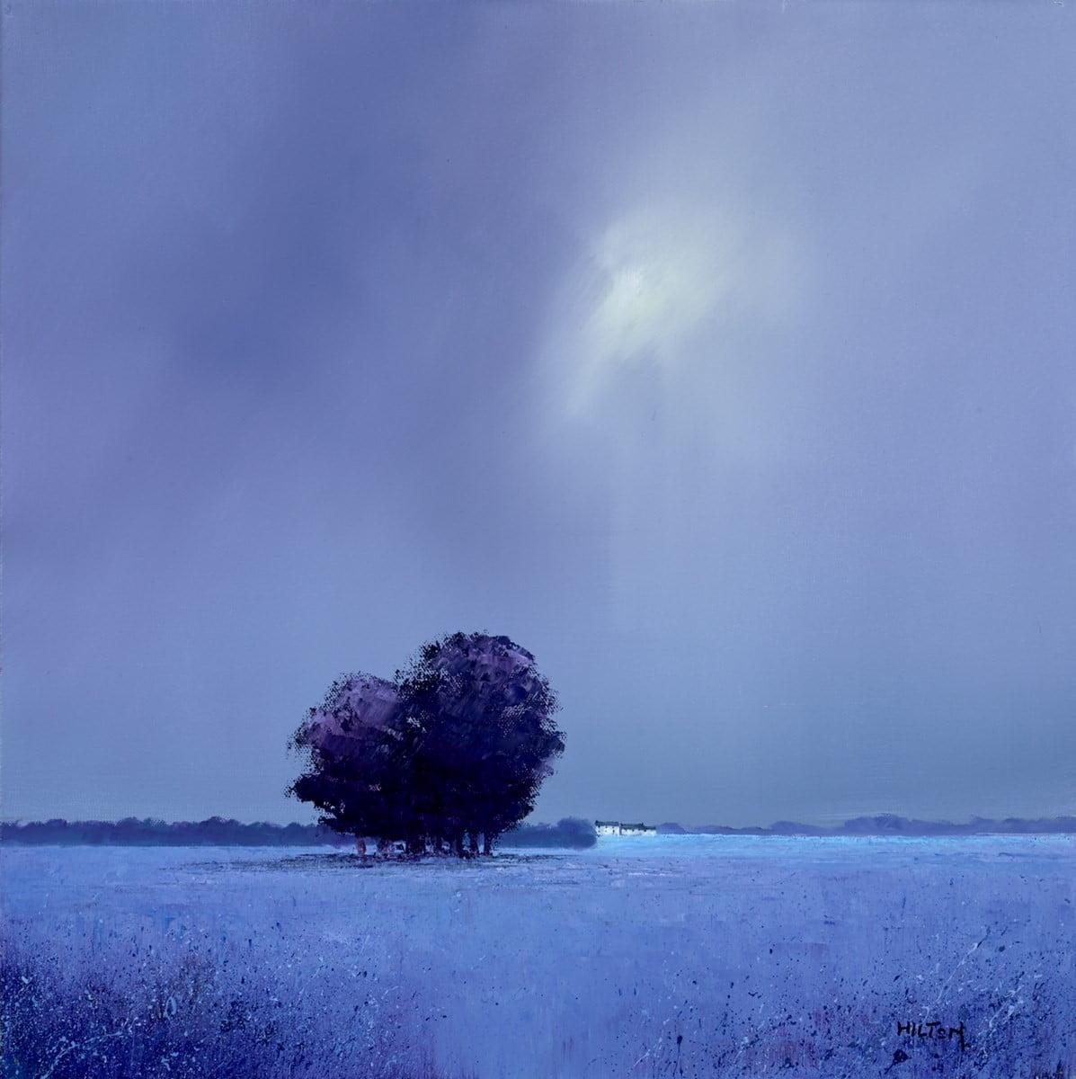 Lavender Summers ~ Barry Hilton