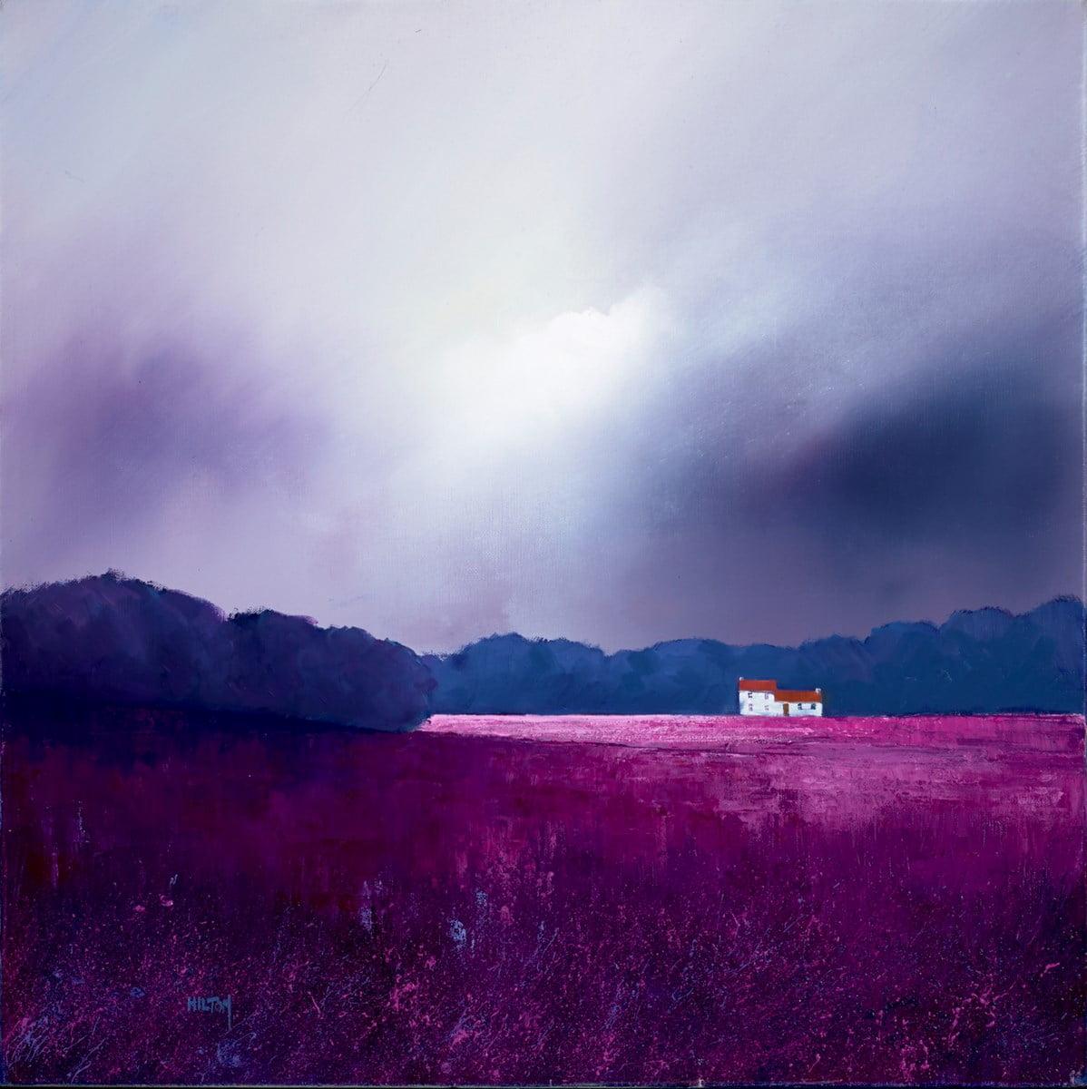 Lighting the Landscape ~ Barry Hilton