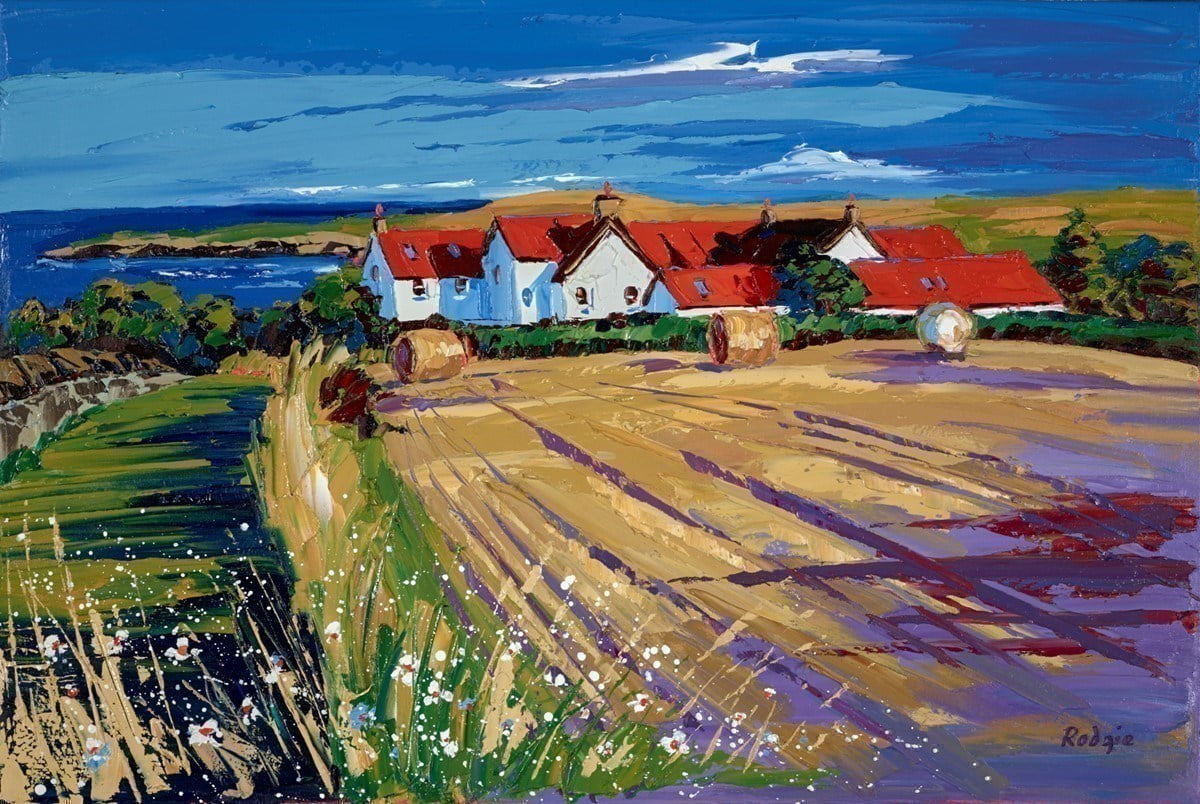 Afternoon Shadows, St Abbs ~ Lynn Rodgie