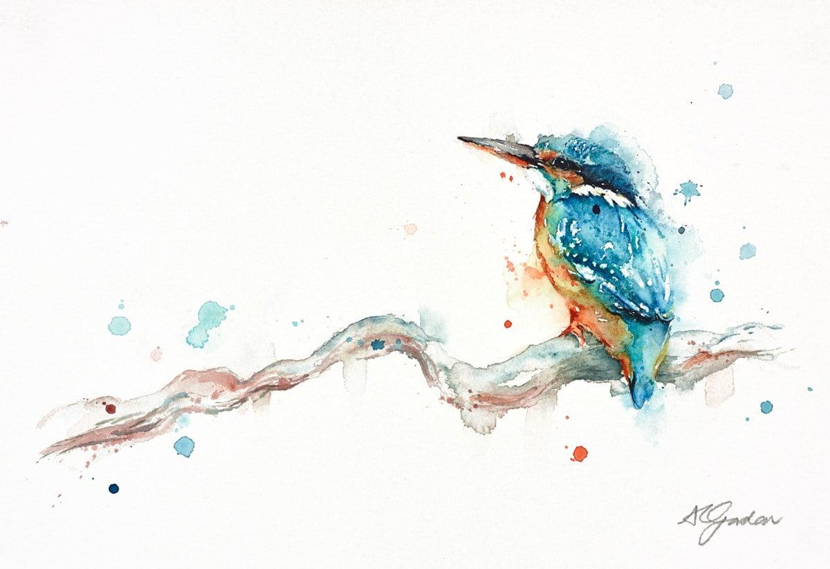 Tiny Kingfisher ~ Amanda Gordon