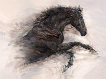 Free spirit i ~ Gary Benfield