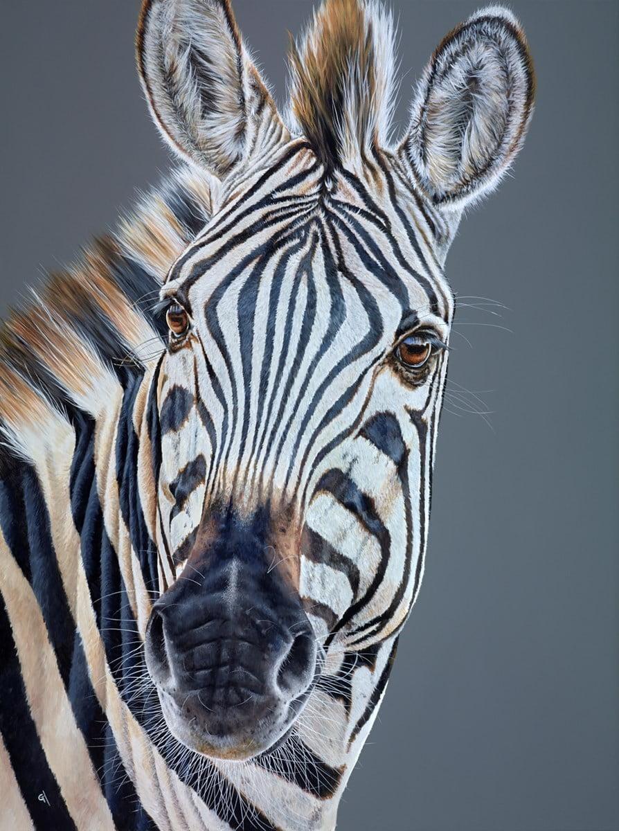 Savannah Stripes ~ Gina Hawkshaw
