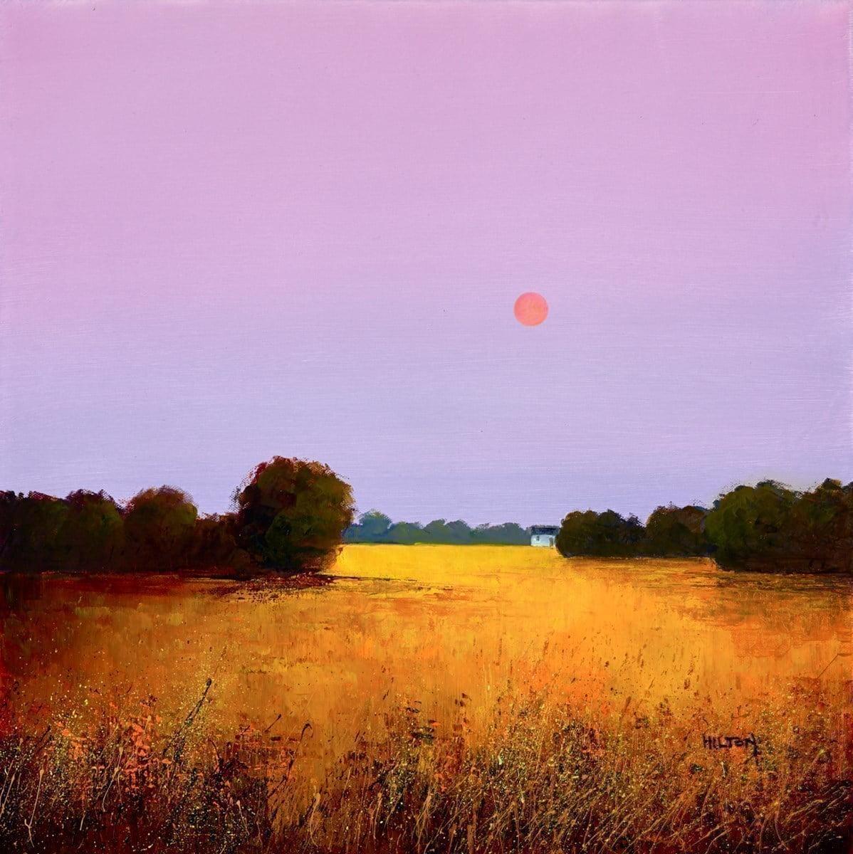 Sunrise Over Cornfield ~ Barry Hilton