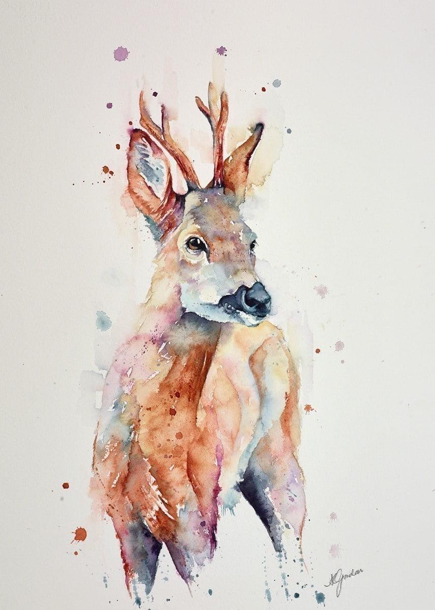 Fine Roe Buck ~ Amanda Gordon