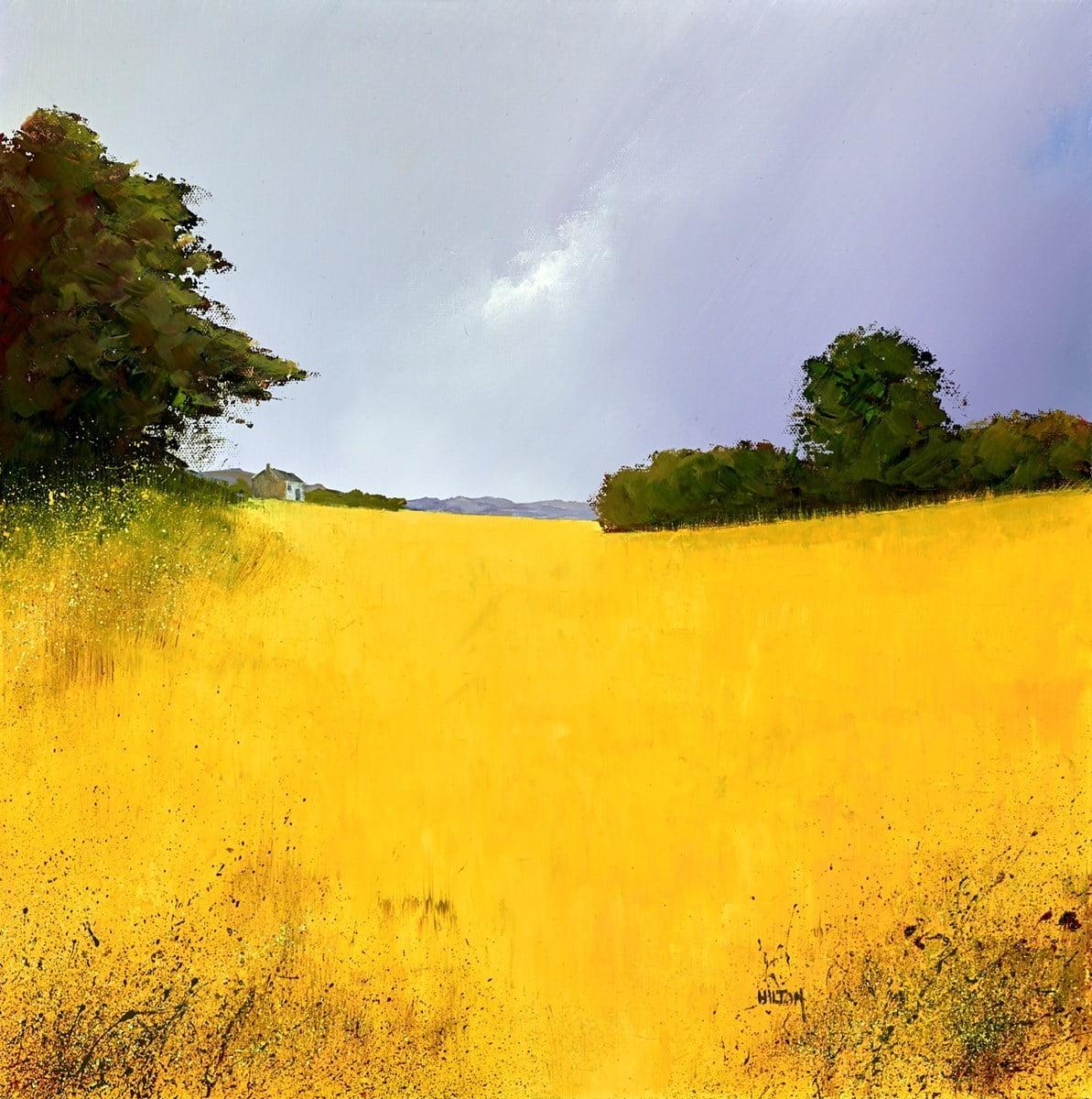 Summer Yellows II ~ Barry Hilton