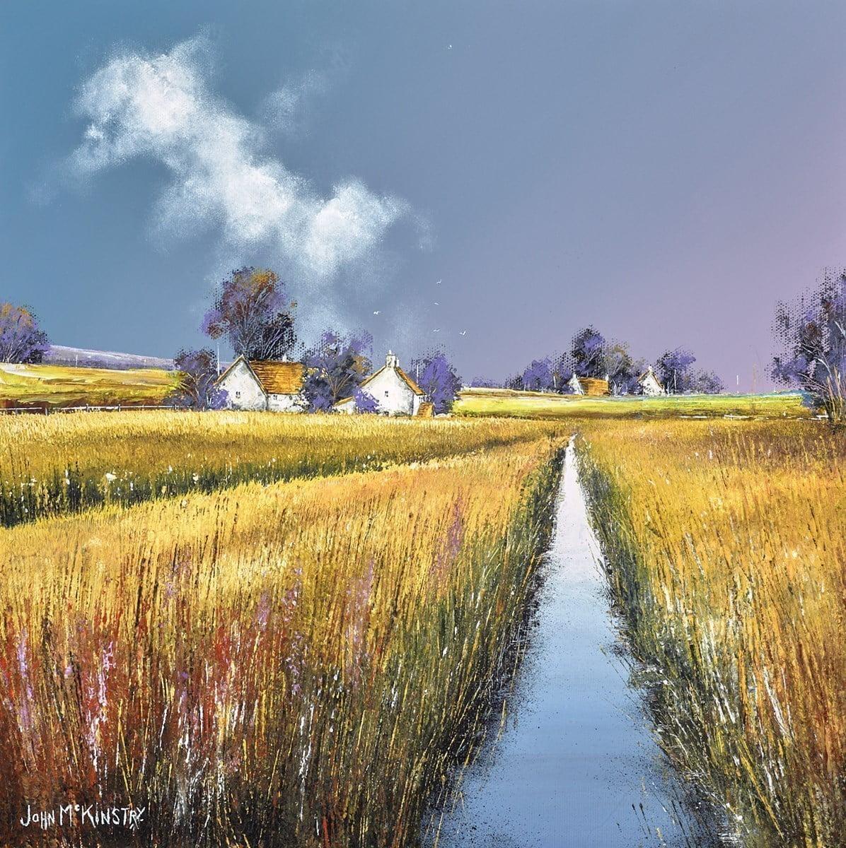 Homelands ~ John Mckinstry