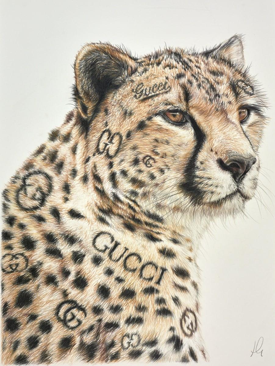 Gucci Guru Study ~ Hayley Goodhead