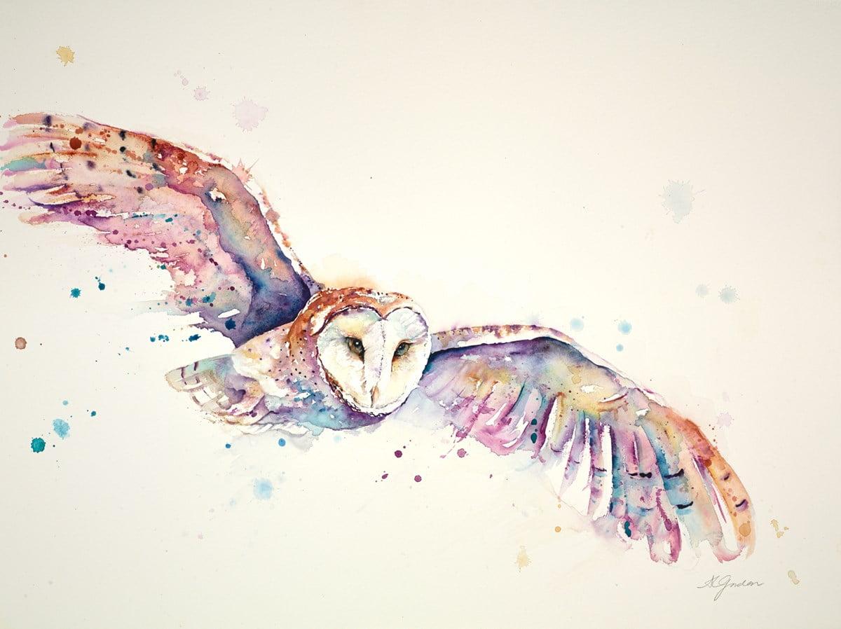 Quiet Flight Of The Barn Owl ~ Amanda Gordon