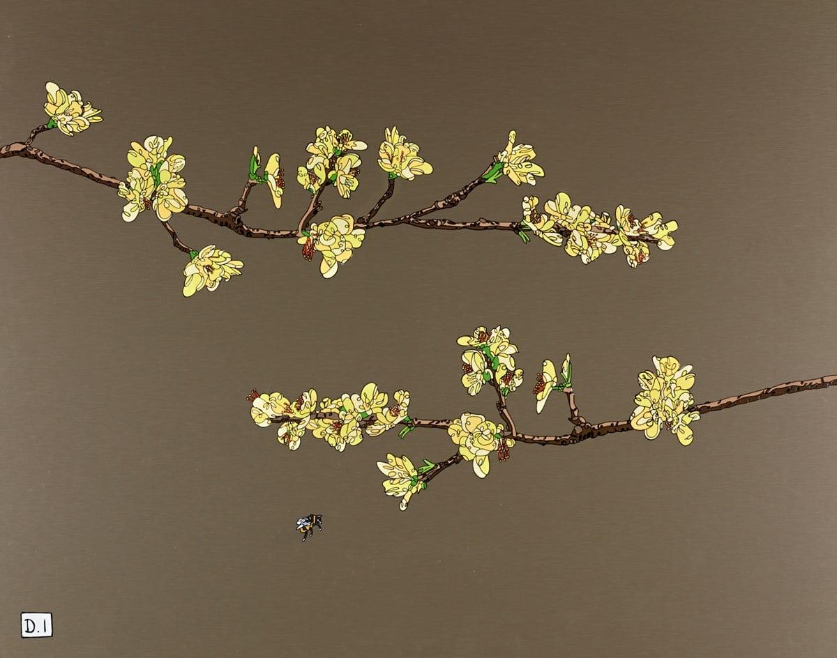Yellow Blossom ~ Dylan Izaak